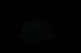 Solarhide logo